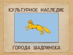 shadrinsk_okn_logo